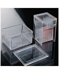 Cuves de coloration avec couvercle pour 10 lames - boîte 4 un. Type de Schifferdecker