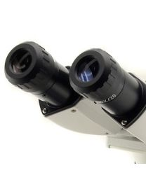 Oculaires B-350
